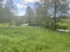 Tirschenreuther Waldnaab zwischen Falkenberg und Hammermühle